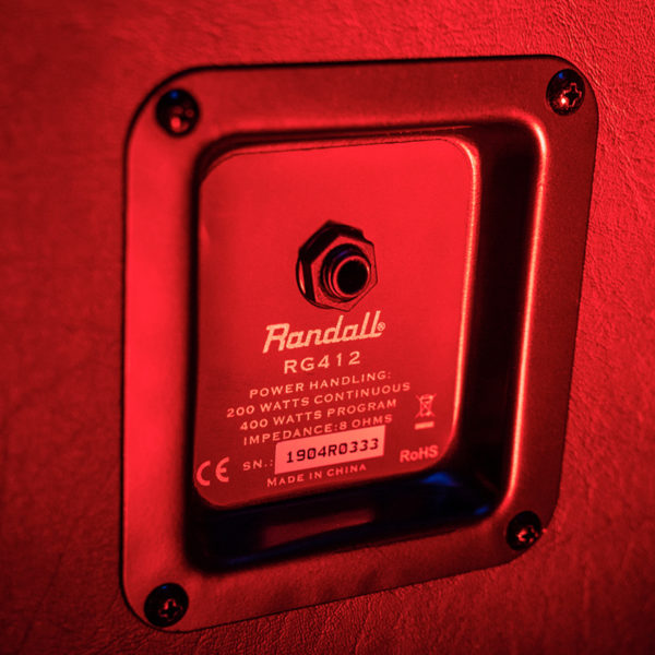 closeup of back of Randall amplifier